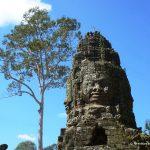 Kambodscha, Angkor Wat, Ta Prohm