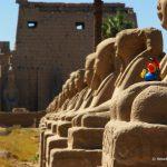 Ägypten, Luxor, Tempel, Badeente